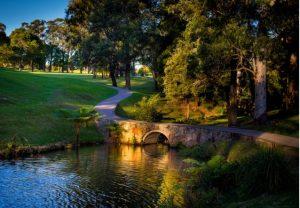 MBA Golf day at Pymble Golf Club